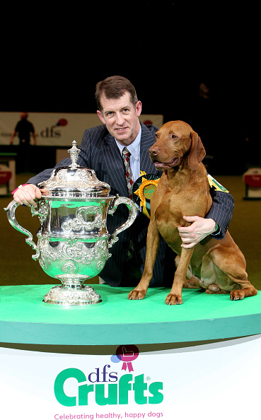 Dan Kitwood「Best In Show Announced At Crufts」:写真・画像(14)[壁紙.com]