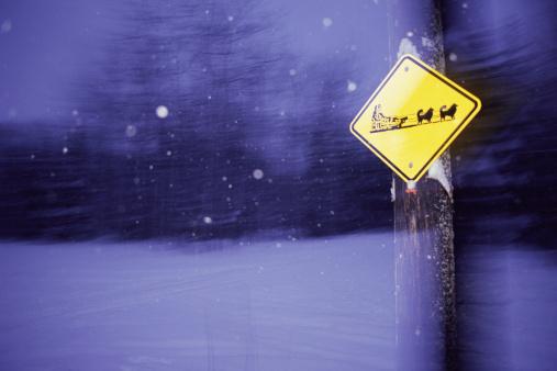 Snow sled「Dogsled crossing sign」:スマホ壁紙(19)