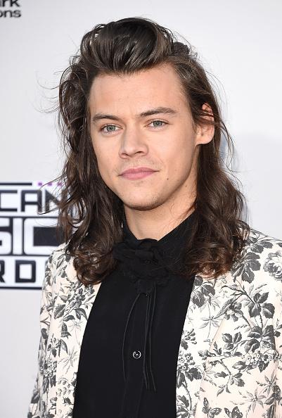 2015年「2015 American Music Awards - Arrivals」:写真・画像(18)[壁紙.com]