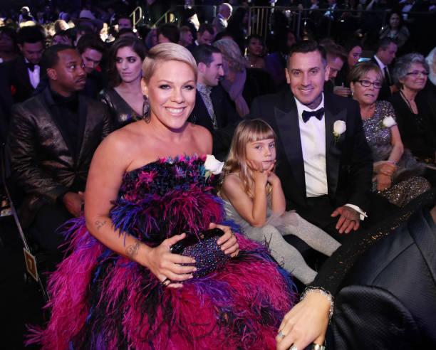 Pink - Singer「60th Annual GRAMMY Awards - Show」:写真・画像(18)[壁紙.com]