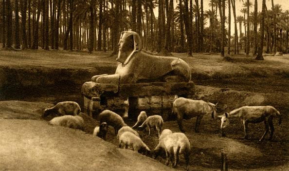 Alabaster「Memphis - The Alabaster Sphinx」:写真・画像(12)[壁紙.com]