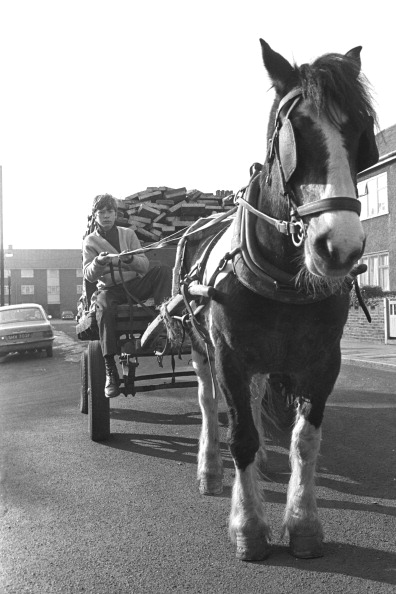 Steve Wood「Horse And Cart」:写真・画像(1)[壁紙.com]