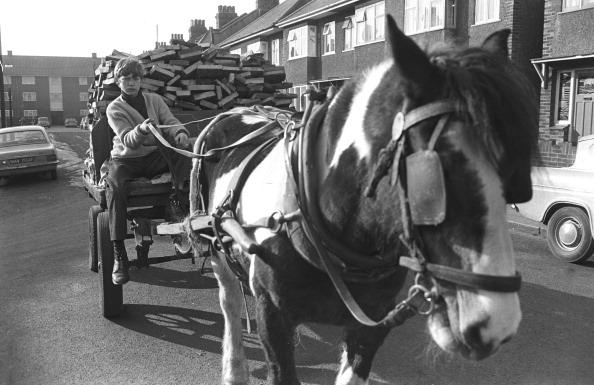 Steve Wood「Horse And Cart」:写真・画像(5)[壁紙.com]