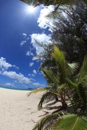 Northern Mariana Islands「Beach in Saipan, Northern Mariana Islands」:スマホ壁紙(17)