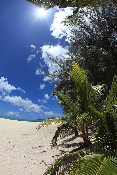 Beach in Saipan, Northern Mariana Islands:スマホ壁紙(壁紙.com)