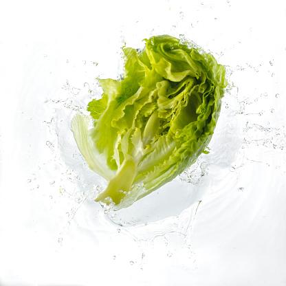 Lettuce「Lettuce Falling Into Water」:スマホ壁紙(18)