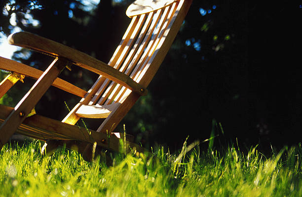 Deckchair on lawn, close-up:スマホ壁紙(壁紙.com)