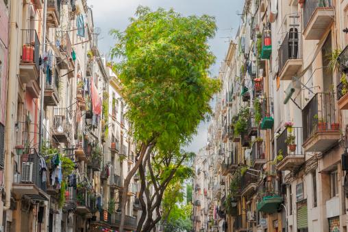 Barcelona - Spain「Visiting Bracelona」:スマホ壁紙(18)