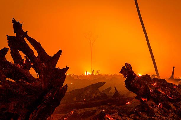 Indonesia Burning:ニュース(壁紙.com)