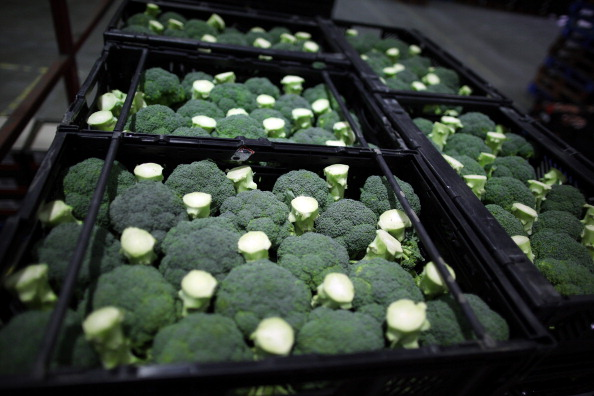Broccoli「Sainsburys Prepare For Christmas At Their Vast Distribution Centre」:写真・画像(13)[壁紙.com]