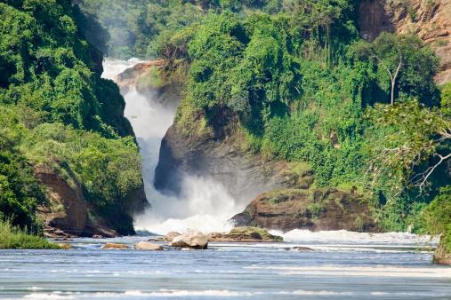Uganda「Murchison Falls, Uganda」:スマホ壁紙(11)
