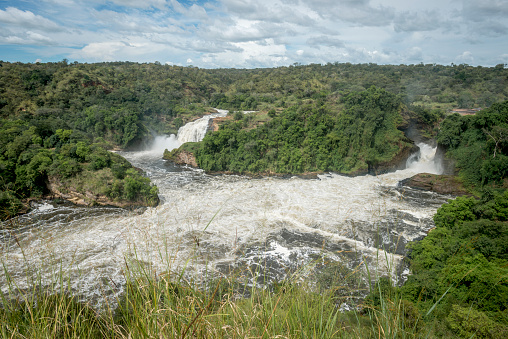 Lake Victoria「Murchison Falls National Park」:スマホ壁紙(6)