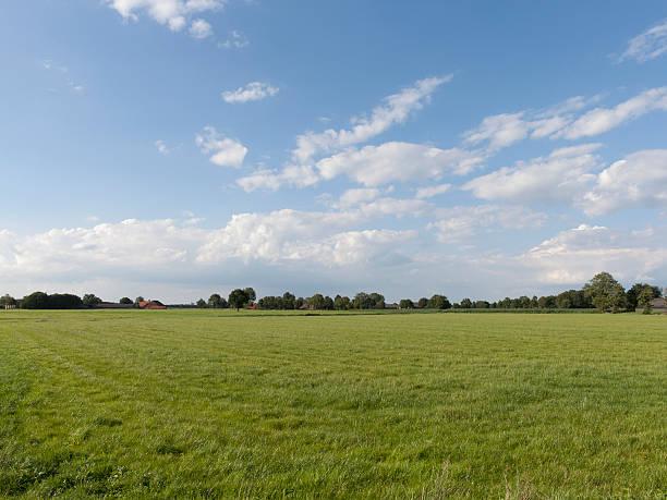 Netherlands, Hilvarenbeek, Rural scenery:スマホ壁紙(壁紙.com)