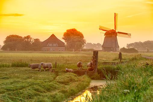 Netherlands「Netherlands, North Holland, windmill at sunset」:スマホ壁紙(9)