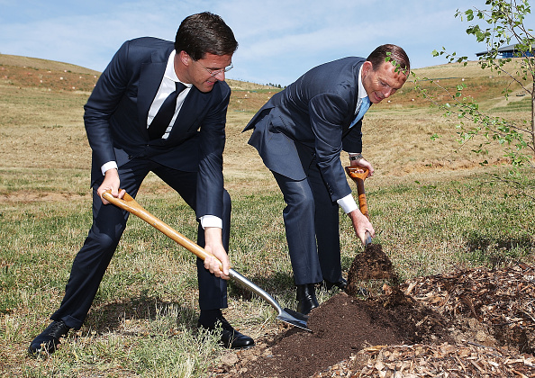 Deciduous tree「Dutch Prime Minister Rutte Visits Australia For MH17 Flight Disaster Talks」:写真・画像(17)[壁紙.com]