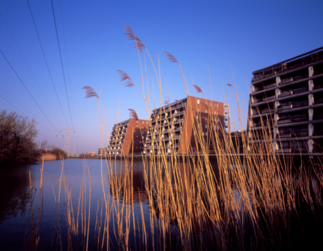 Electricity Pylon「Netherlands, Suburban Utrecht, Reed and apartment buildings by lake」:スマホ壁紙(17)