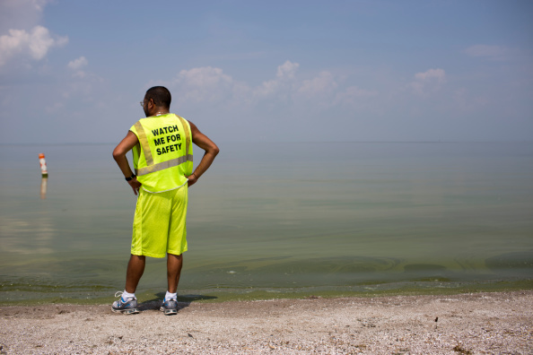 Great Lakes「Toledo, Ohio Contends With Contaminated Tap Water For Third Day」:写真・画像(3)[壁紙.com]