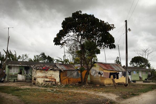 Sugar Cane「Haitians Live Precarious Existence on DR Agricultural Plantations」:写真・画像(11)[壁紙.com]