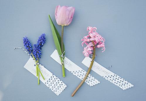 イースター「Grape hyacinth, hyacinth and tulip with tags」:スマホ壁紙(3)