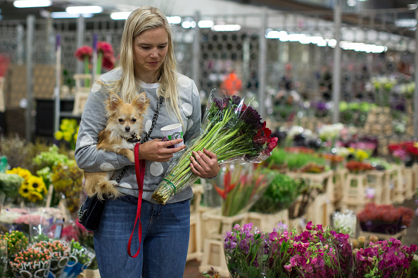 flower「Last Day Of Trading At The Covent Garden Flower Market」:写真・画像(9)[壁紙.com]