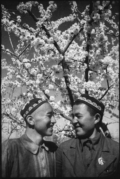 Max Penson「Notable Horiculturists」:写真・画像(16)[壁紙.com]