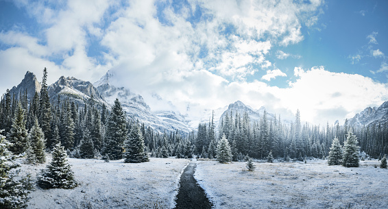 Footpath「Mountains and forest in winter, Yoho National Park, Field, British Columbia, Canada」:スマホ壁紙(11)