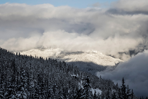 スノーボード「Mountains and forest in winter, Whistler, British Columbia, Canada」:スマホ壁紙(7)