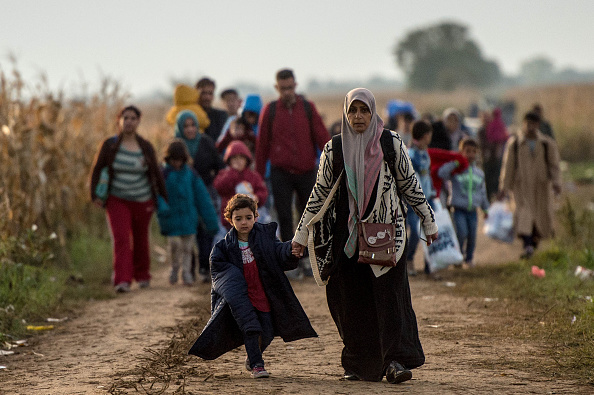 Europe「Migrants Gather on Serbian Border with Croatia」:写真・画像(18)[壁紙.com]