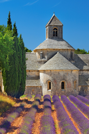 Abbey - Monastery「Abbey with blooming lavender field」:スマホ壁紙(18)