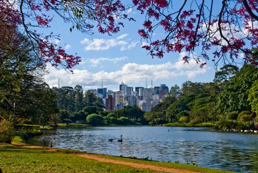 São Paulo「Sao Paulo, Brazil, skyline」:スマホ壁紙(19)