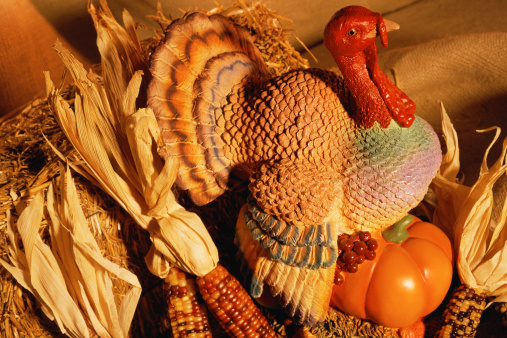 Turkey - Bird「Ceramic turkey surrounded by harvest vegetables」:スマホ壁紙(12)