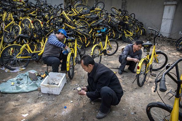 Big Data「Beijing's Bike Share Boom Creates Refuge for Battered Bicycles」:写真・画像(17)[壁紙.com]