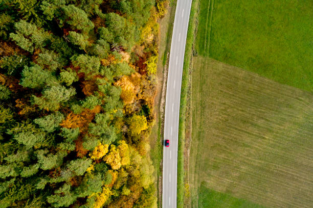Country road with fall foliage from above:スマホ壁紙(壁紙.com)
