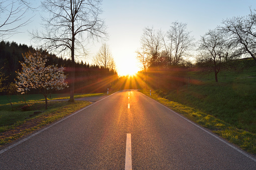 Empty Road「Country road at sunset in Spring」:スマホ壁紙(2)