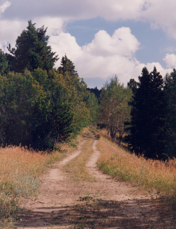 Vertical「Country road in the Colorado rockies」:スマホ壁紙(19)