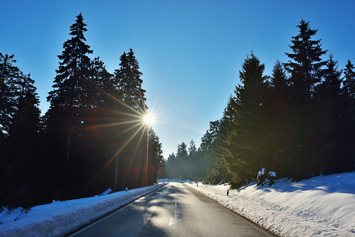 Harz Mountain「Country Road  through Coniferous Forest  in Winter with Sun, Altenau, Harz, Lower Saxony, Germany」:スマホ壁紙(13)