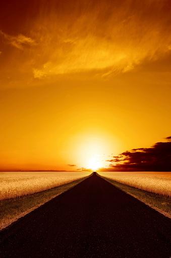 草地「夕暮れの XXXL country road」:スマホ壁紙(3)