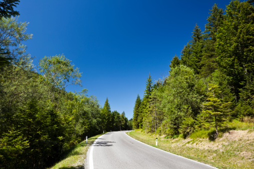 Austria「Country Road near Plansee Lake in Summer, Alps, Austria」:スマホ壁紙(14)