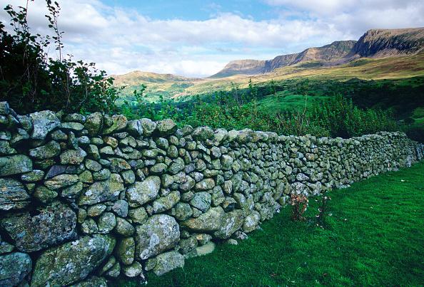 Grass「Dry Stone Wall Near Cader Idris, Wales」:写真・画像(12)[壁紙.com]