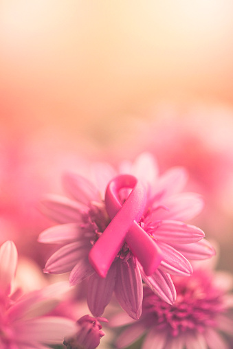 Women's Issues「Breast Cancer Awareness ribbon on pink flowers with soft background」:スマホ壁紙(11)