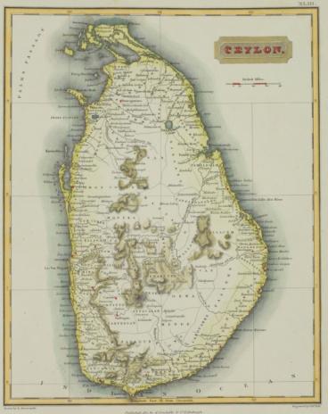 Island「Antique map of Ceylon , present day Sri Lanka」:スマホ壁紙(2)