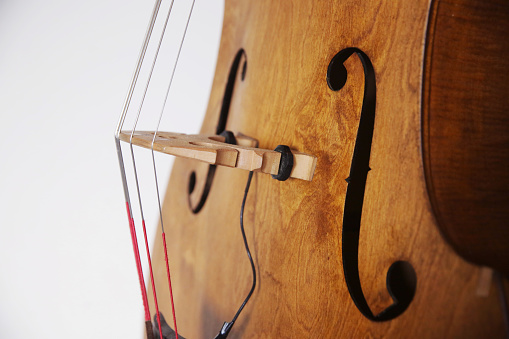 Bass Instrument「Detail image of a stand up bass strings and F hole.」:スマホ壁紙(5)