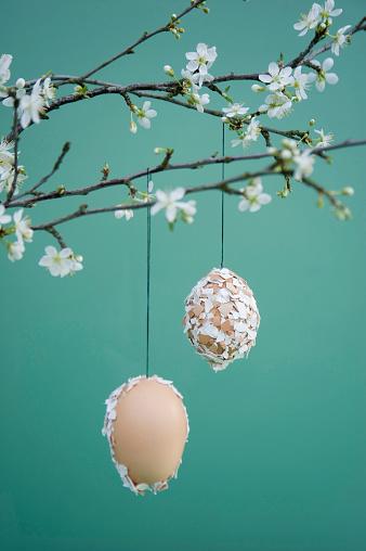 Easter「Easter decoration, Easter egg with eggshells hanging on twig」:スマホ壁紙(4)