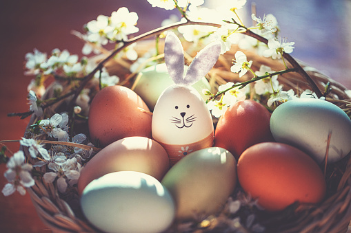 Easter Bunny「Easter decoration with crafted Easter bunny in the sunny nest」:スマホ壁紙(2)