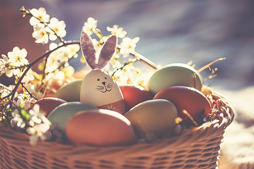 Easter Bunny「Easter decoration with crafted Easter bunny in the sunny nest」:スマホ壁紙(3)