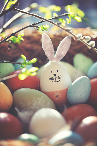 Animal Egg「Easter decoration with crafted Easter bunny in the sunny nest」:スマホ壁紙(16)