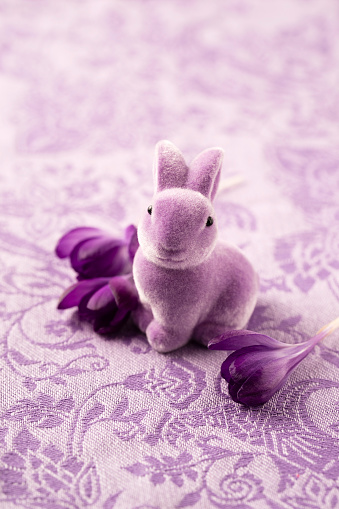 Easter Bunny「Easter decoration with purple Easter bunny and blossoms of crocus」:スマホ壁紙(1)