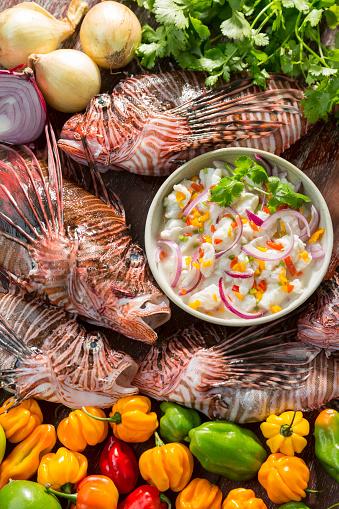 野菜・フルーツ「ライオンの魚のセビチェ」:スマホ壁紙(7)