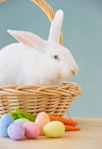 Easter Basket「Rabbit in Easter basket」:スマホ壁紙(18)