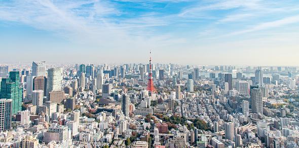 Politics「Tokyo Tower」:スマホ壁紙(2)